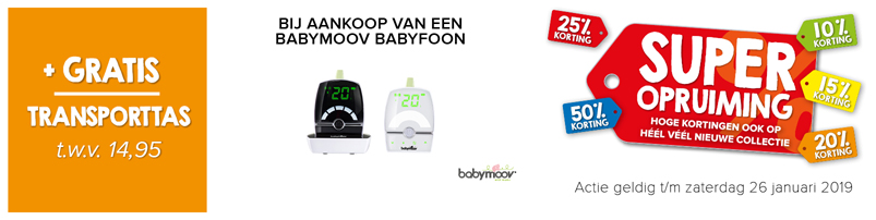 Babymoov Yoo Travel Beeldbabyfoon