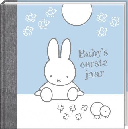 Interstat<br> Baby's Eerste Jaar blauw