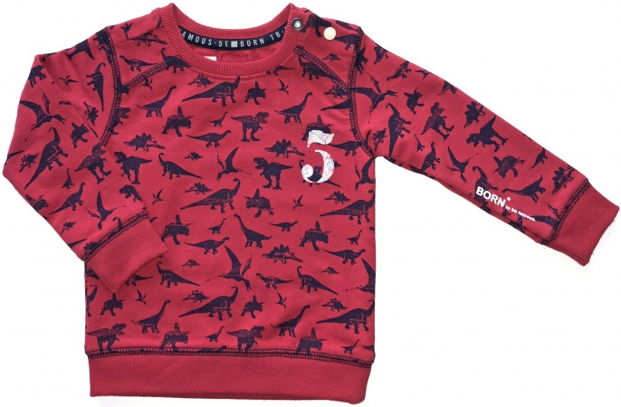 Born To Be Famous Trui Dinosaur Red