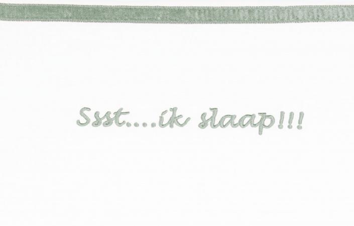 Briljant Laken Ssst...ik slaap!!! Stone Green <br> 100 x 150 cm
