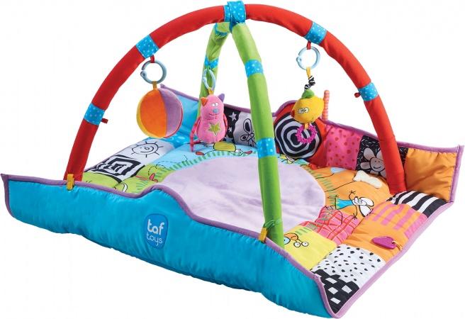 Taf Toys Newborn Gym 100 x 100 cm