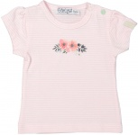 T-Shirt Korte Mouw Stripe Light Pink