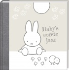 Interstat Baby's Eerste Jaar Zilver