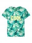 Name It T-Shirt Korte Mouw Jeson Spray